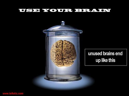 脳をイメージすると「頭の切替」スムーズになるかも…。